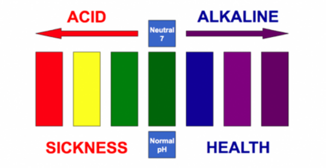 Benefits Of An Alkaline Body